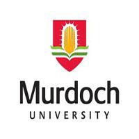 默多克大学
