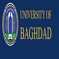 巴格达大学