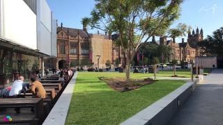 悉尼大学每年选修几门课程,2门课程少不少