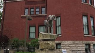 爱荷华州立大学,有着世界级声誉