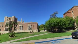 加州大学洛杉矶分校本科优势专业有哪些,推荐以下五个专业