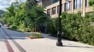 加拿大的麦吉尔大学与多伦多大学相比,如何哪个学校更好一些