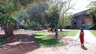 南昆士兰大学,享有极高的世界声誉