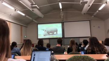 去新西兰留学的感受,和现实差距很大吗