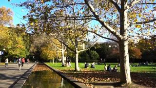 墨尔本大学有哪些优秀的学院,主要有以下五个学院