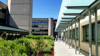 多伦多大学三个校区的区别是什么,主要有五个不同点