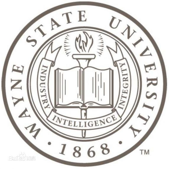 韦恩州立大学