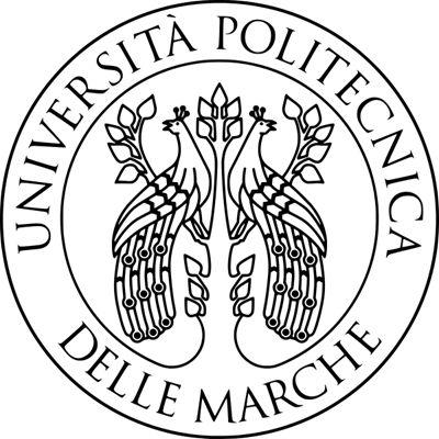 马尔凯理工大学