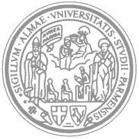 帕尔马大学