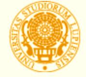 萨兰托大学