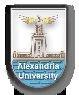 亚历山大大学