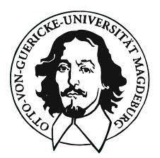 马格德堡大学