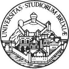 布雷西亚大学(意大利)