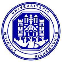 贝尔加莫大学