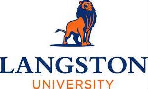 兰斯顿大学